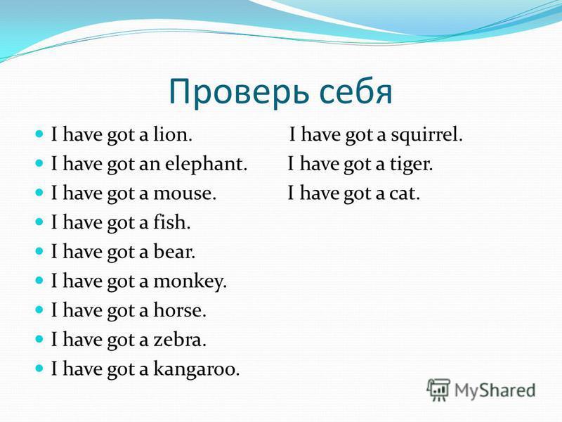Проверь себя I have got a lion. I have got a squirrel. I have got an elephant. I have got a tiger. I have got a mouse. I have got a cat. I have got a fish. I have got a bear. I have got a monkey. I have got a horse. I have got a zebra. I have got a k