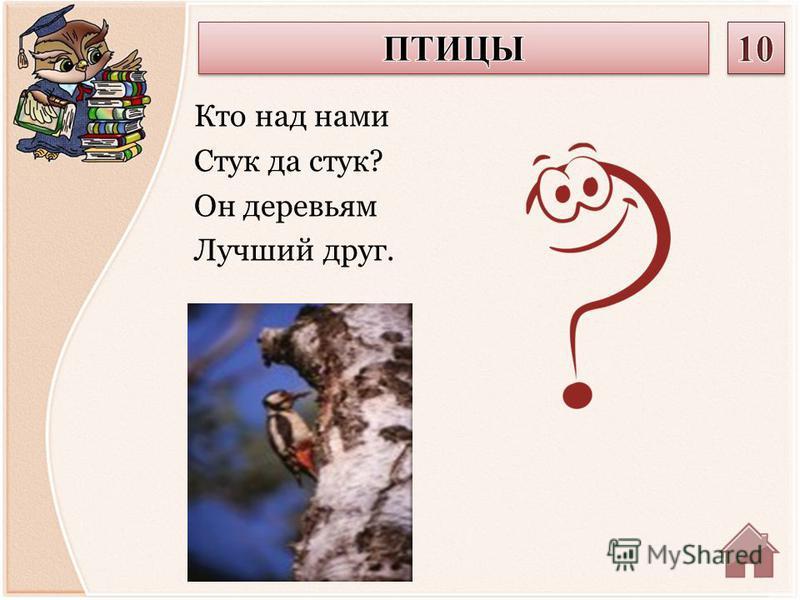 Кто над нами Стук да стук? Он деревьям Лучший друг.