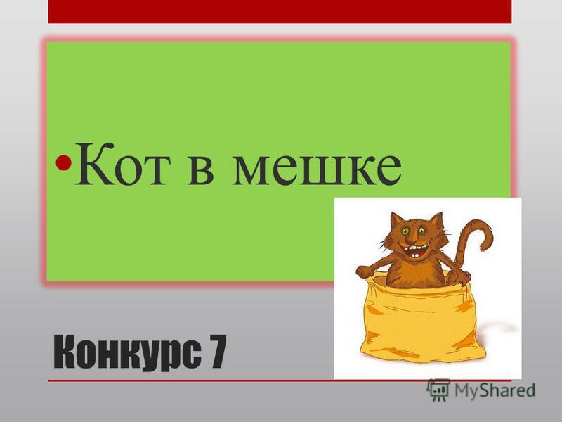 Конкурс 7 Кот в мешке