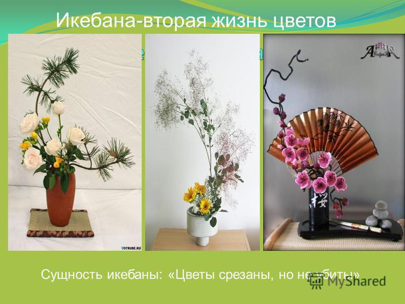 Сущность икебаны: «Цветы срезаны, но не убиты» Икебана-вторая жизнь цветов