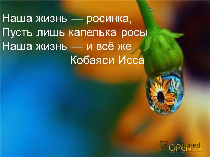 Наша жизнь росинка, Пусть лишь капелька росы Наша жизнь и всё же Кобаяси Исса