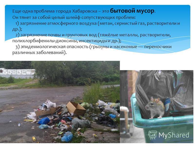 Еще одна проблема города Хабаровска – это бытовой мусор. Он тянет за собой целый шлейф сопутствующих проблем: 1) загрязнение атмосферного воздуха (метан, сернистый газ, растворители и др.); 2) загрязнение почвы и грунтовых вод (тяжёлые металлы, раств