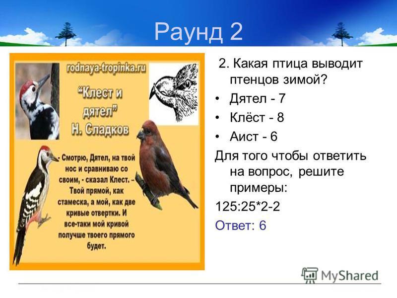 Раунд 2 2. Какая птица выводит птенцов зимой? Дятел - 7 Клёст - 8 Аист - 6 Для того чтобы ответить на вопрос, решите примеры: 125:25*2-2 Ответ: 6