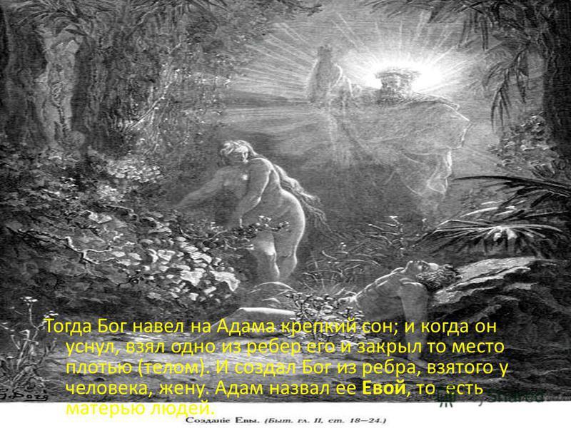 Тогда Бог навел на Адама крепкий сон; и когда он уснул, взял одно из ребер его и закрыл то место плотью (телом). И создал Бог из ребра, взятого у человека, жену. Адам назвал ее Евой, то есть матерью людей.