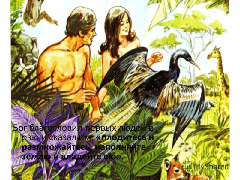 Бог благословил первых людей в раю и сказал им: «плодитесь и размножайтесь, наполняйте землю и владейте ею».