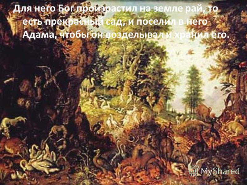 Для него Бог произрастил на земле рай, то есть прекрасный сад, и поселил в него Адама, чтобы он возделывал и хранил его.