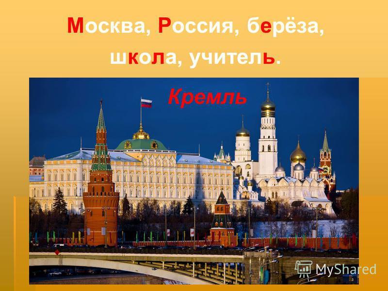 Москва, Россия, берёза, школа, учитель. Кремль