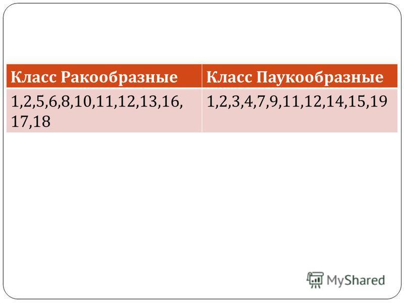 Класс Ракообразные Класс Паукообразные 1,2,5,6,8,10,11,12,13,16, 17,18 1,2,3,4,7,9,11,12,14,15,19