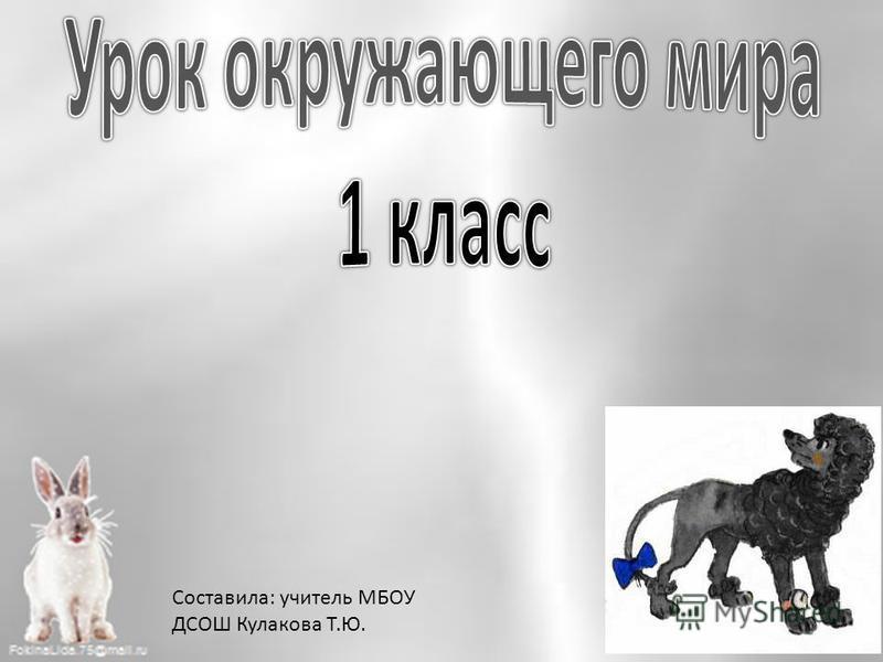 Составила: учитель МБОУ ДСОШ Кулакова Т.Ю.