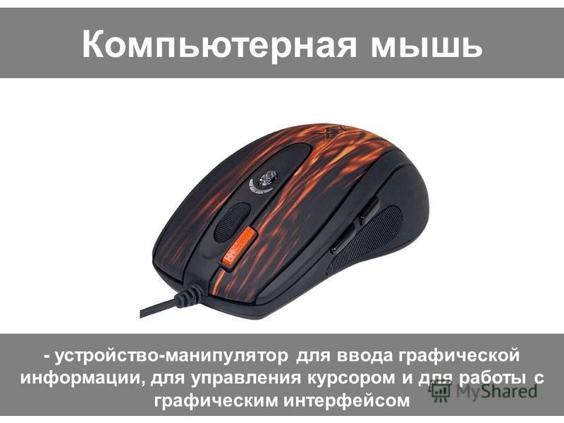 Компьютерная мышь - устройство-манипулятор для ввода графической информации, для управления курсором и для работы с графическим интерфейсом