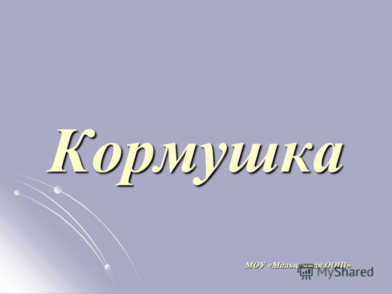 Кормушка МОУ «Мальцевская ООШ»