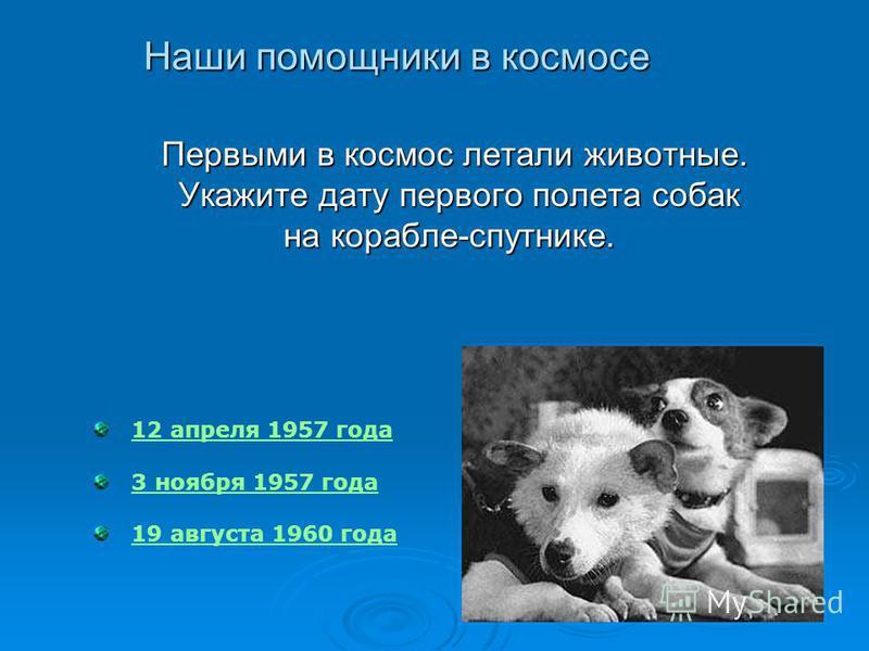 12 апреля 1957 года 3 ноября 1957 года 19 августа 1960 года Первыми в космос летали животные. Первыми в космос летали животные. Укажите дату первого полета собак Укажите дату первого полета собак на корабле-спутнике. на корабле-спутнике. Наши помощни
