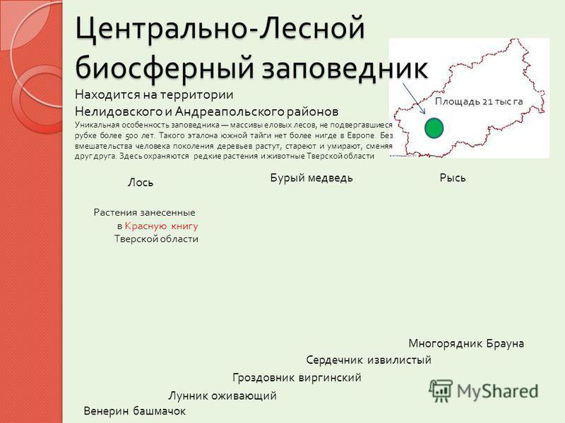 Центрально - Лесной биосферный заповедник Находится на территории Нелидовского и Андреапольского районов Уникальная особенность за  поведника массивы еловых лесов, не подвергавшиеся рубке более 500 лет. Такого эталона южной тайги нет более нигде в Е