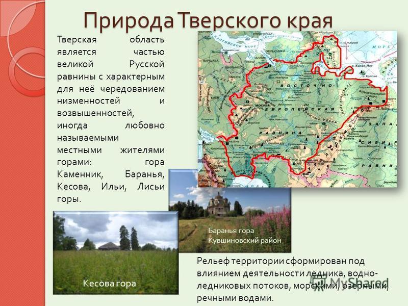 Природа Тверского края Тверская область является частью великой Русской равнины с характерным для неё чередованием низменностей и возвышенностей, иногда любовно называемыми местными жителями горами : гора Каменник, Баранья, Кесова, Ильи, Лисьи горы.