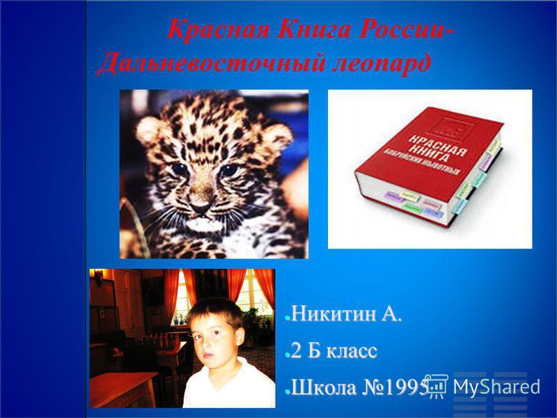 Красная Книга России- Дальневосточный леопард Никитин А. Никитин А. 2 Б класс 2 Б класс Школа 1995 Школа 1995