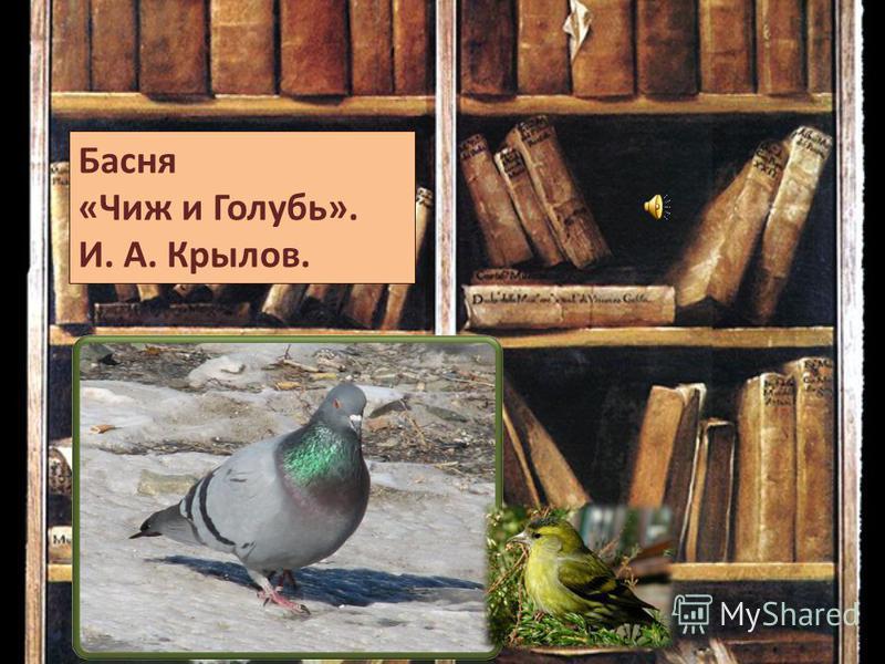 Басня «Чиж и Голубь». И. А. Крылов.