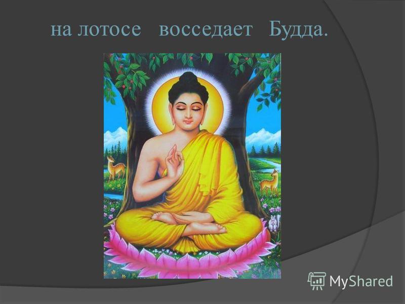 на лотосе восседает Будда.