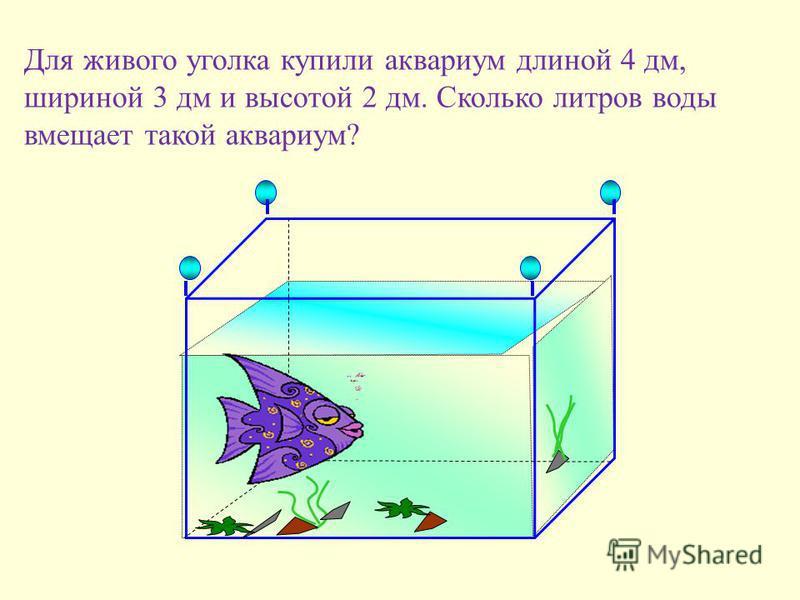 Для живого уголка купили аквариум длиной 4 дм, шириной 3 дм и высотой 2 дм. Сколько литров воды вмещает такой аквариум?