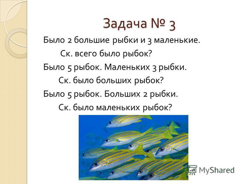 Задача 3 Было 2 большие рыбки и 3 маленькие. Ск. всего было рыбок ? Было 5 рыбок. Маленьких 3 рыбки. Ск. было больших рыбок ? Было 5 рыбок. Больших 2 рыбки. Ск. было маленьких рыбок ?
