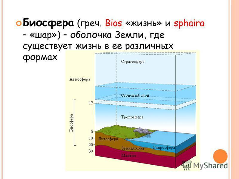 Биосфера (греч. Bios «жизнь» и sphaira – «шар») – оболочка Земли, где существует жизнь в ее различных формах