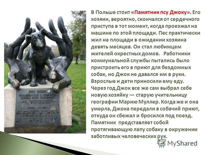 В Польше стоит «Памятник псу Джоку». Его хозяин, вероятно, скончался от сердечного приступа в тот момент, когда проезжал на машине по этой площади. Пес практически жил на площади в ожидании хозяина девять месяцев. Он стал любимцем жителей окрестных д