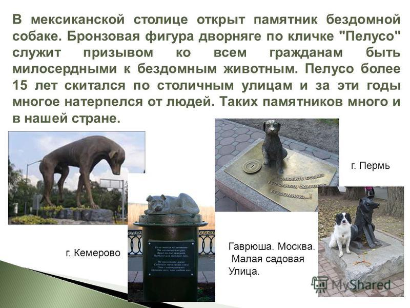 В мексиканской столице открыт памятник бездомной собаке. Бронзовая фигура дворняге по кличке