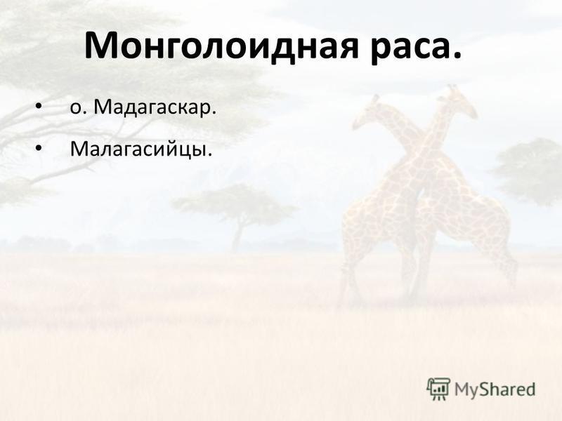Монголоидная раса. о. Мадагаскар. Малагасийцы.