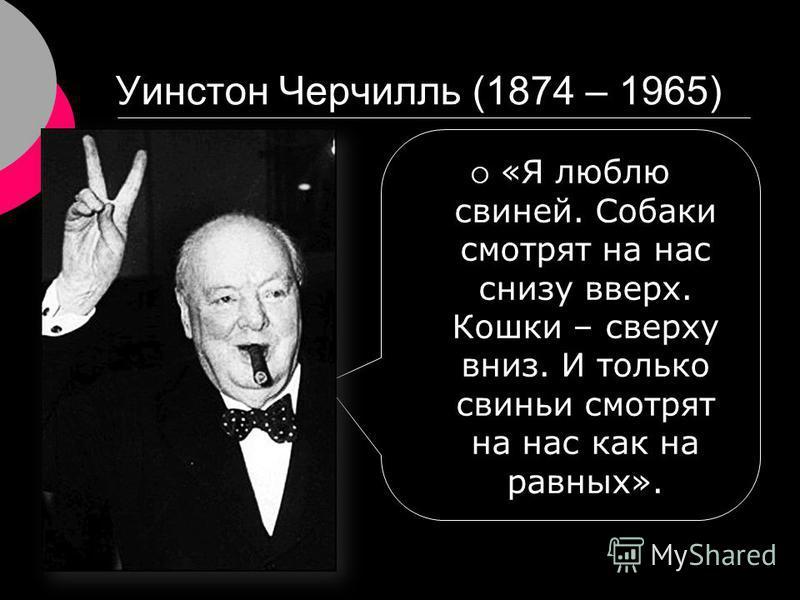 Уинстон Черчилль (1874 – 1965) «Я люблю свиней. Собаки смотрят на нас снизу вверх. Кошки – сверху вниз. И только свиньи смотрят на нас как на равных».