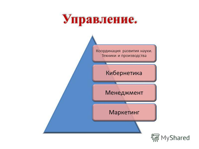 Управление. Координация развития науки. Техники и производства Кибернетика МенеджментМаркетинг