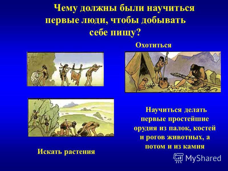 Чему должны были научиться первые люди, чтобы добывать себе пищу? Научиться делать первые простейшие орудия из палок, костей и рогов животных, а потом и из камня Охотиться Искать растения