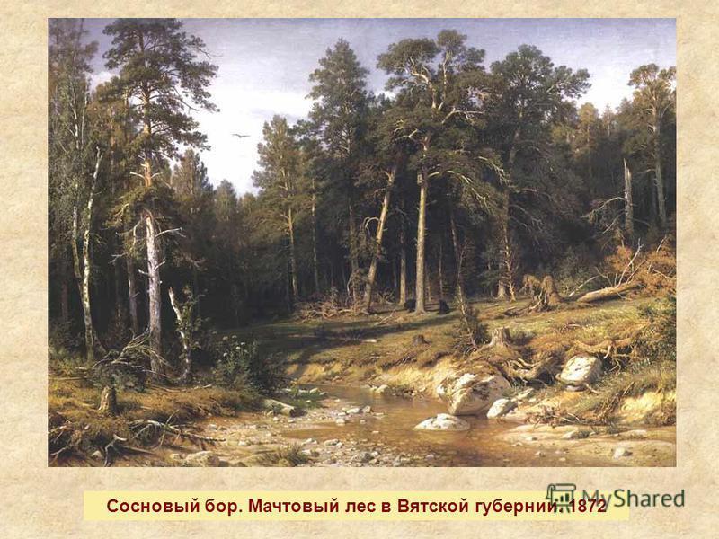 Сосновый бор. Мачтовый лес в Вятской губернии. 1872