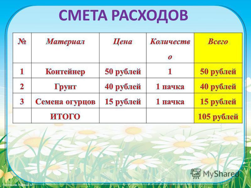 FokinaLida.75@mail.ru СМЕТА РАСХОДОВ