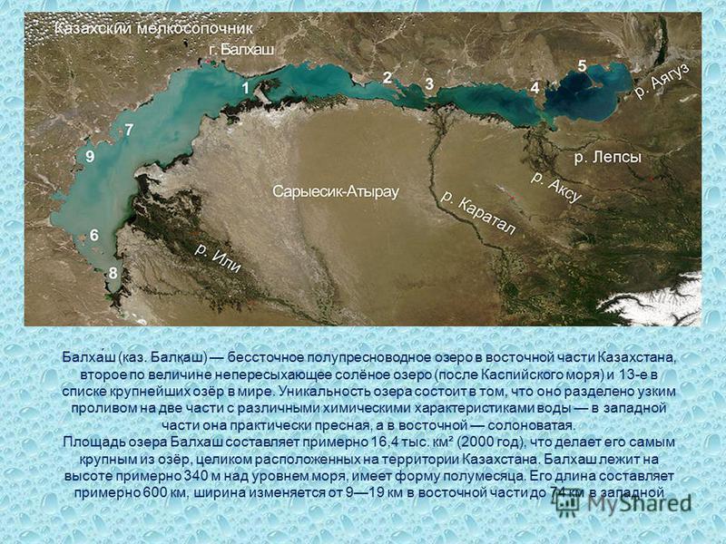 В Республике Казахстане имеется 48 262 озера, из которых 45 248 имеют площадь менее 1 км². Крупных озёр с площадью более 100 км² 21 Казахстан омывается такими крупными озёрами, как Каспийское море и Аральское море. Кроме того, в республике находится