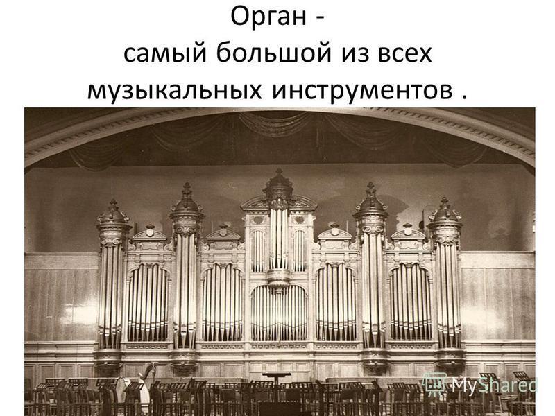 Орган - самый большой из всех музыкальных инструментов.