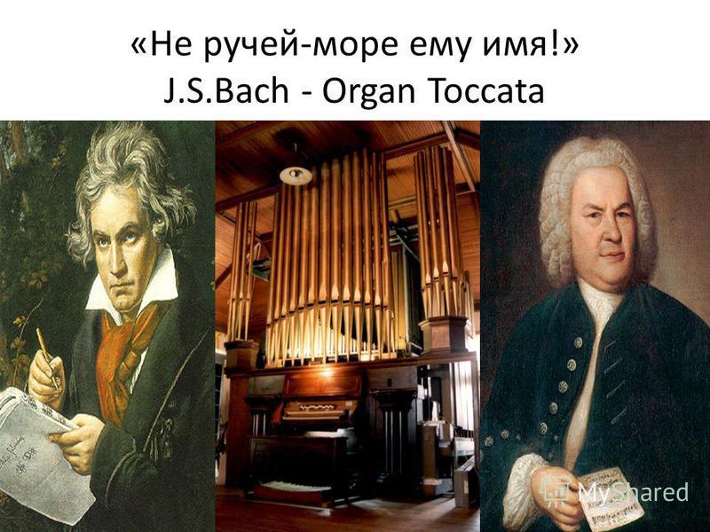 «Не ручей-море ему имя!» J.S.Bach - Organ Toccata