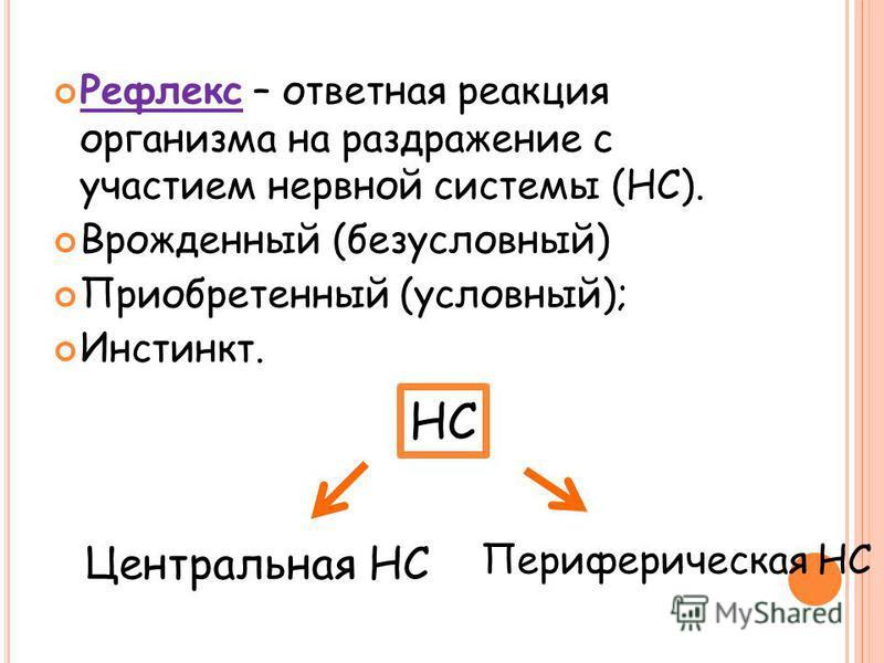 Рефлекс – ответная реакция организма на раздражение с участием нервной системы (НС). Врожденный (безусловный) Приобретенный (условный); Инстинкт. НС Центральная НС Периферическая НС