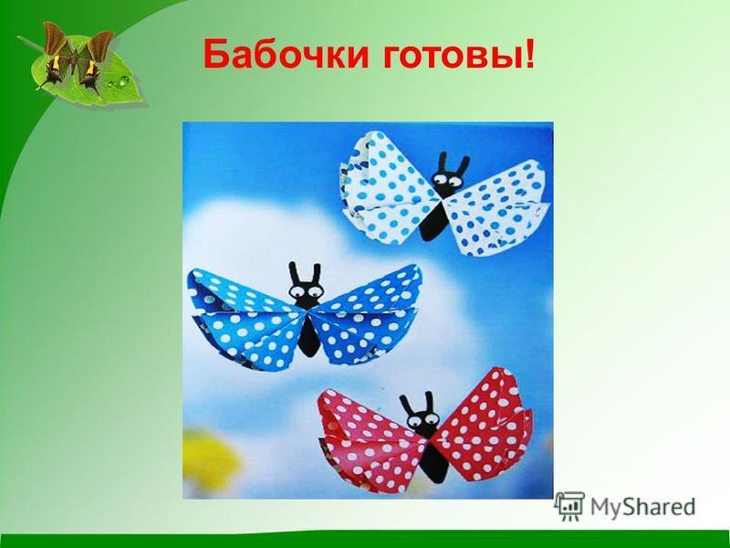 Бабочки готовы!