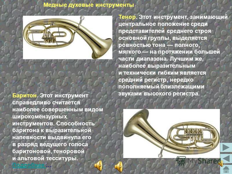 В отличие от других представителей медной группы духовых инструментов туба - довольно молодой инструмент. Она была построена во второй четверти 19 века в Германии. Первые тубы были несовершенны и применялись поначалу только в военных и садовых оркест