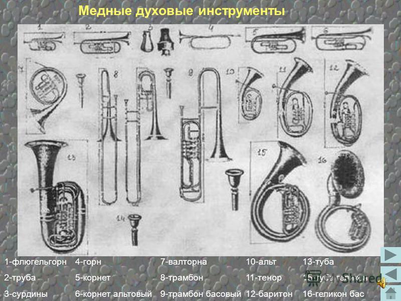 Оркестр – многочисленный коллектив музыкальных инструментов, исполняющий произведения, специально предназначенные для данного состава. В зависимости от состава оркестры имеют различные, выразительные, тембровые и динамические возможности и носят разн
