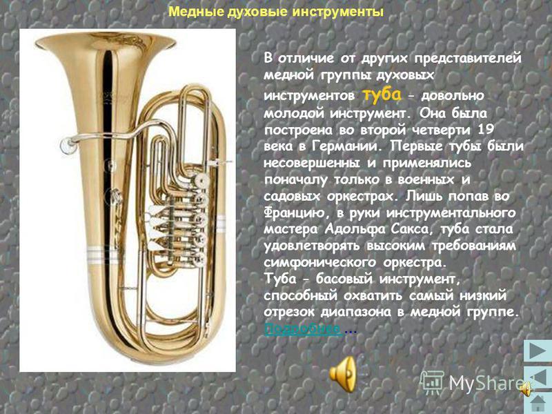 Альт, также как и тенор и баритон, относится к инструментам средних слоев. Внешний вид этих инструментов и мензура подвергались различным изменениям: одни из них имели удлиненную форму трубки, наподобие трубы или тромбона, другие округленную, сходную