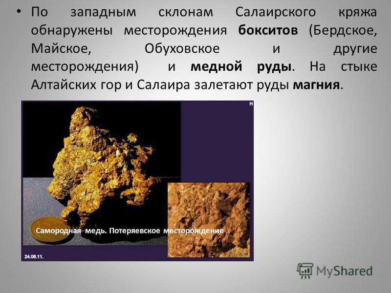 По западным склонам Салаирского кряжа обнаружены месторождения бокситов (Бердское, Майское, Обуховское и другие месторождения) и медной руды. На стыке Алтайских гор и Салаира залетают руды магния. Самородная медь. Потеряевское месторождение