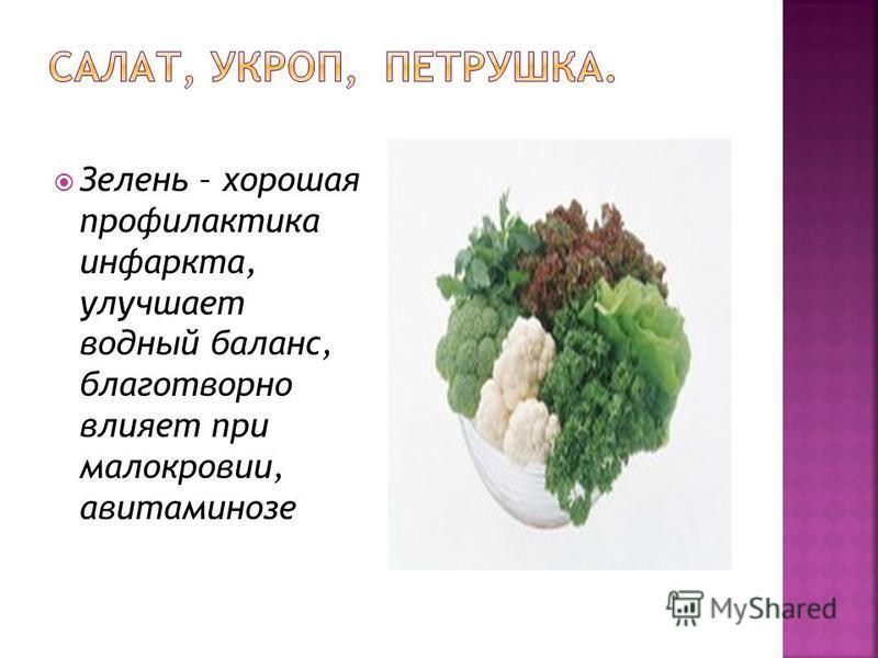 Зелень – хорошая профилактика инфаркта, улучшает водный баланс, благотворно влияет при малокровии, авитаминозе