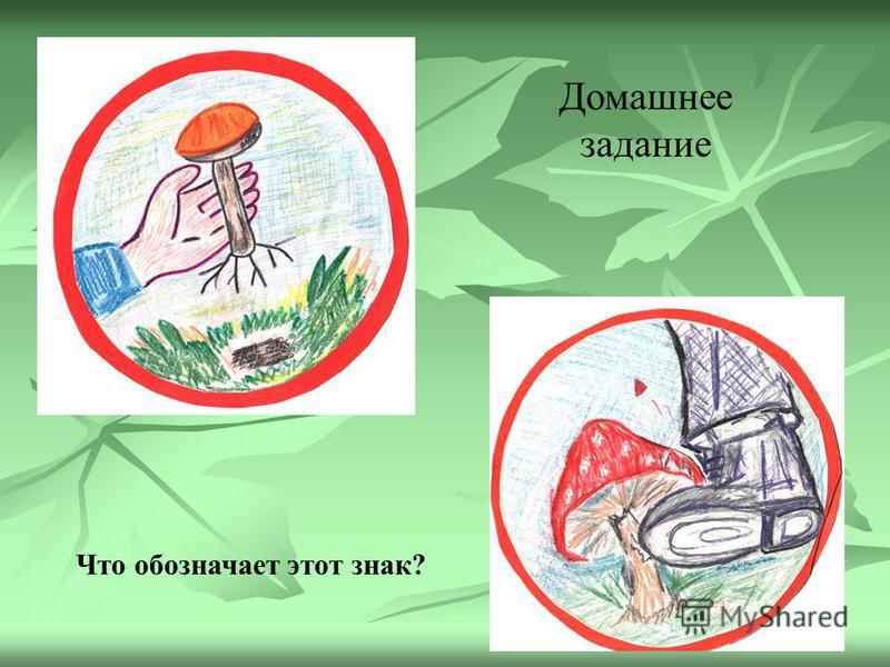 Неживая природа Царство растений Царство животных Царство грибов Шляпочные Дрожжевые Плесневые ПЛАСТИНЧАТЫЕТРУБЧАТЫЕ
