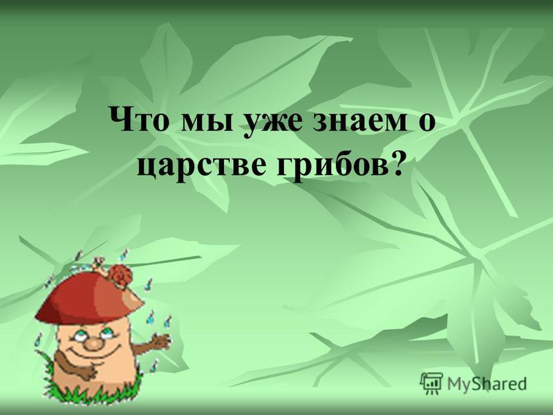 Наука о грибах – микология.