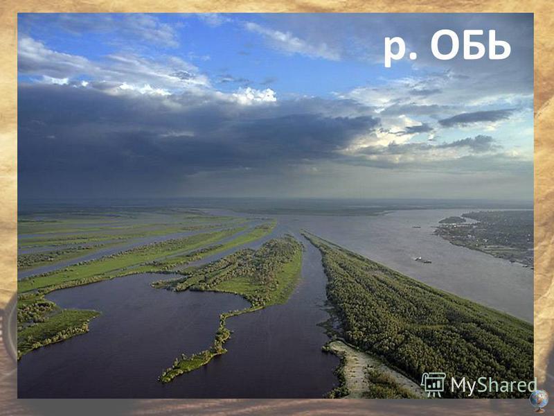 У этой реки с координатами 65ºс.ш. 65ºв.д. 150 000 притоков. р. ОБЬ