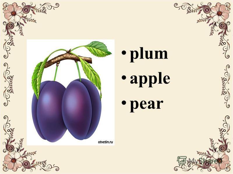 p lum a pple p ear