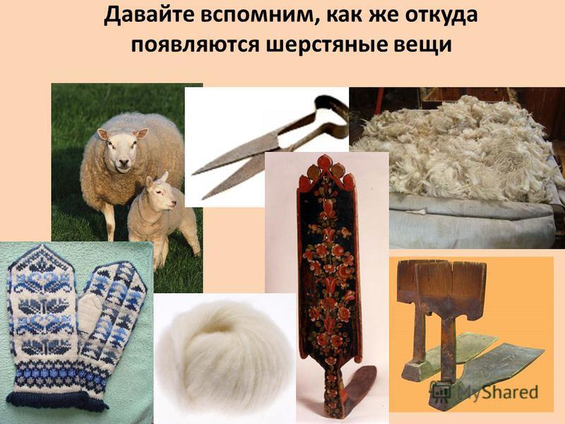 Что делают из шерсти кроме одежды окружающий мир 2 класс 77