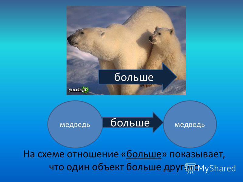 больше медведь больше На схеме отношение «больше» показывает, что один объект больше другого