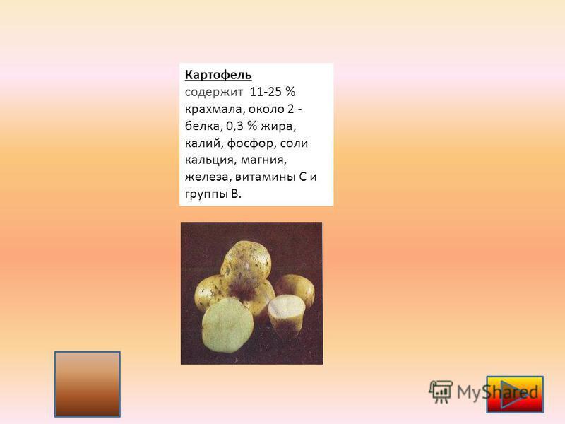 4 Картофель содержит 11-25 % крахмала, около 2 - белка, 0,3 % жира, калий, фосфор, соли кальция, магния, железа, витамины С и группы В.