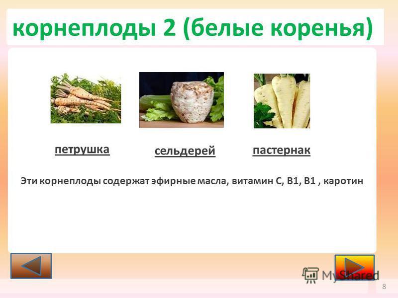 корнеплоды 2 (белые коренья) 8 петрушка сельдерей пастернак